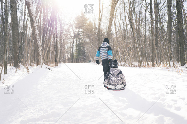 Rear view of boy pulling sled with brother on snowy field against bare trees
