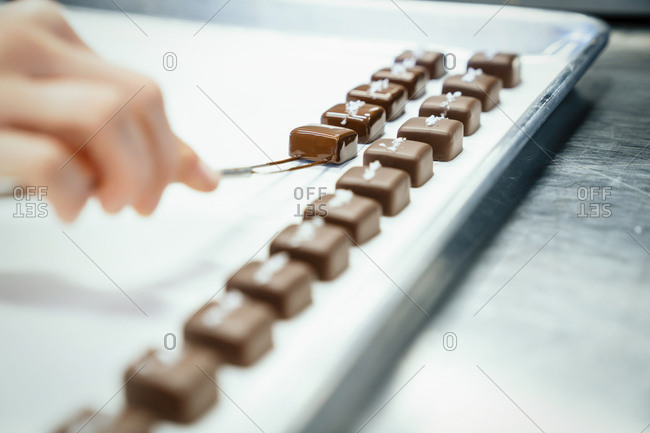 Cropped hand of chef arranging chocolates pieces in tray