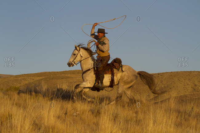 USA, Wyoming, Shell, The Hideout Ranch, Cowboy With Lasso Riding Galloping Horse in Golden Light at End of Day