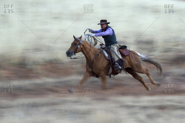 USA, Wyoming, Shell, The Hideout Ranch, Cowboy and Horse in Action
