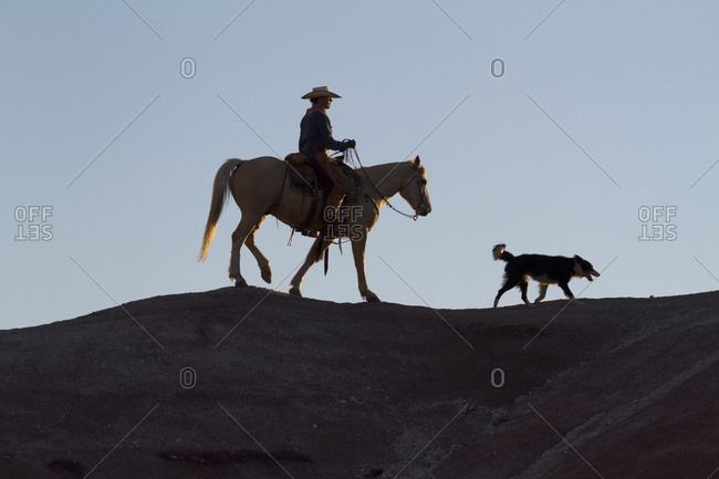 USA, Wyoming, Shell, The Hideout Ranch, Cowgirl, Horse and Dog on Ridgeline in Early Light