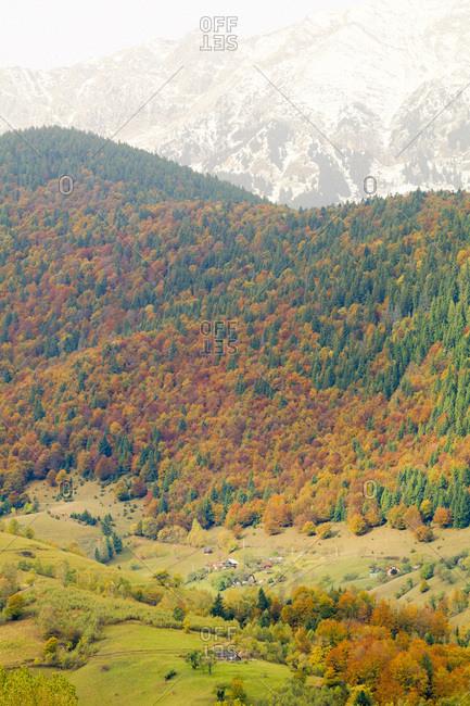 Europe, Romania, Magura, Territorial views over hillsides