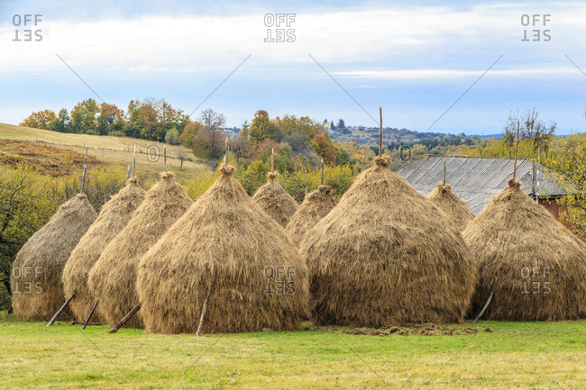 Europe, Romania, Haystacks