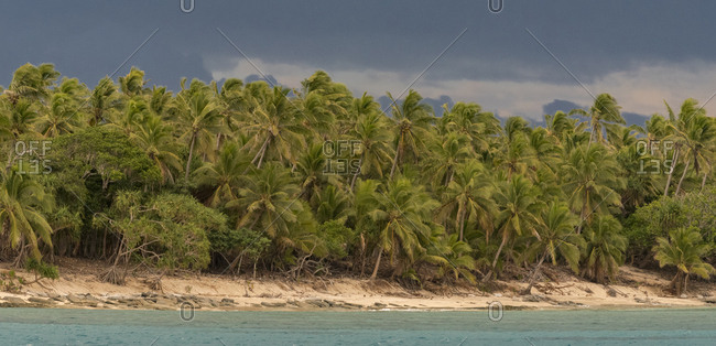 Deserted sandy beach on an uninhabited island with palm trees and storm clouds, Kingdom of Tonga