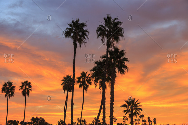 Colorful sunrise, Mission Bay, San Diego, California, USA
