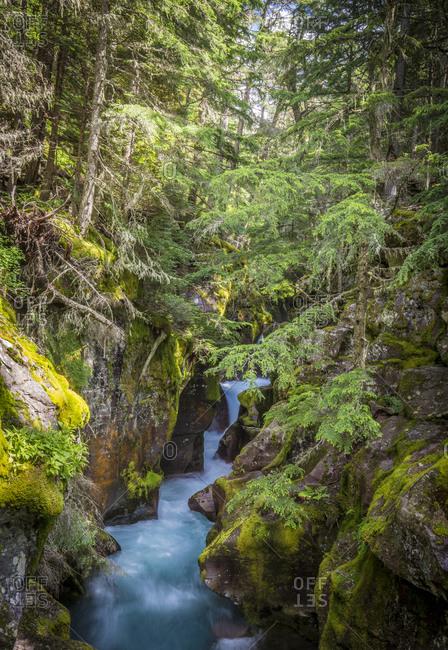 Avalanche Creek, Landscape, Flume, stream