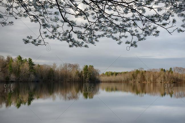 USA, New York State, Placid spring morning on Mud Lake, Beaver Lake Nature Center