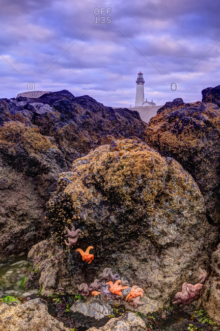 Yaquina Head Lighthouse, near Newport, Oregon Coast