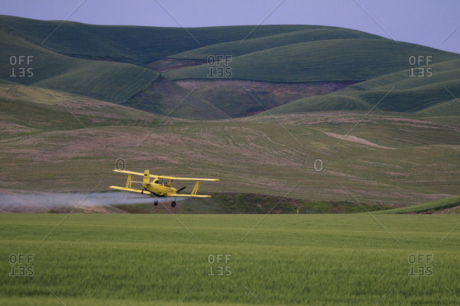 Walla Walla, Washington State, USA, Crop duster maintaining the wheat fields of northern Walla Wall County