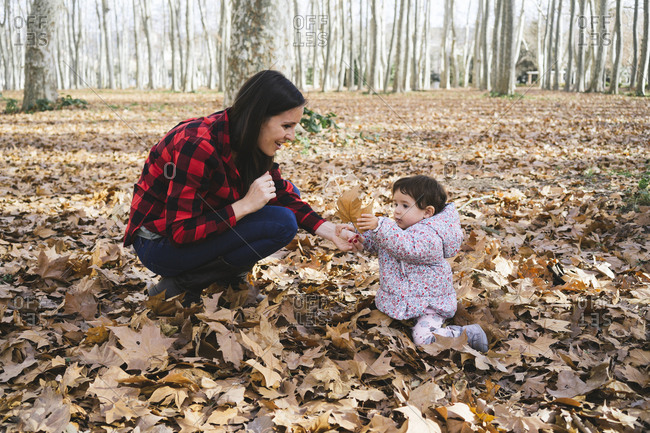 Mother and baby girl playing with autumn leaves  in park