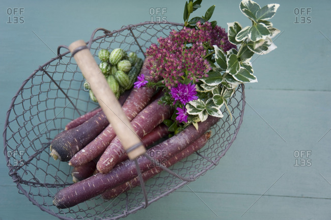 Basket with purple haze- mini cucumber- cauliflower mushroom- aster and box tree