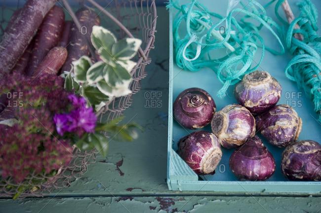 Basket with purple haze- box with hyacinth corms