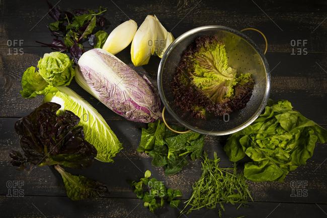 Various sorts of salads