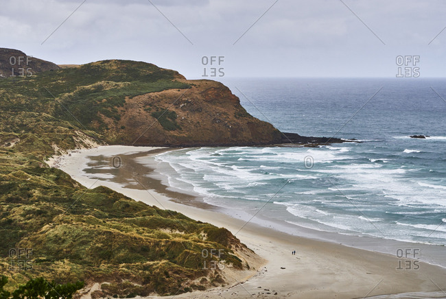 New Zealand- South Island- Dunedin- Otago Peninsula- Sandfly Bay