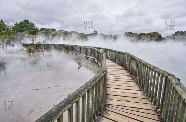 New Zealand- North Island- Rotorua- boardwalk through geothermal area