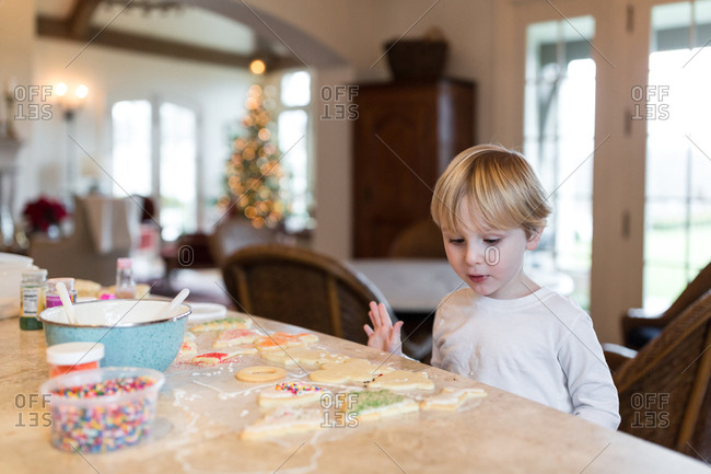 Young boy helping making batch of Christmas cookies at kitchen counter