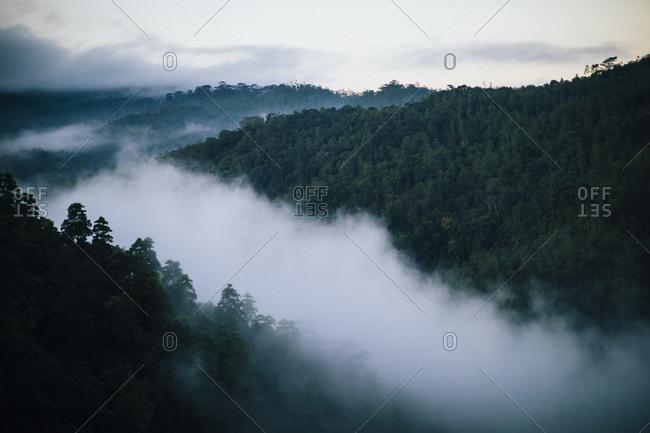 Kandy, Sri Lanka - February 6, 2018: Morning mist sitting in the valleys of the Knuckles mountain range