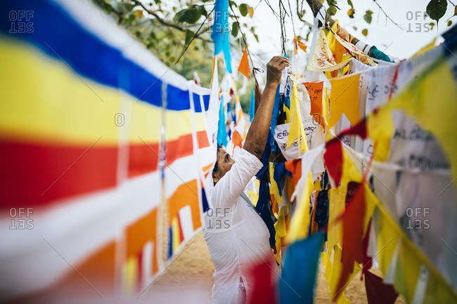 Kandy, Sri Lanka - January 31, 2018: Woman hangs up colorful prayer flags outside on tree branches