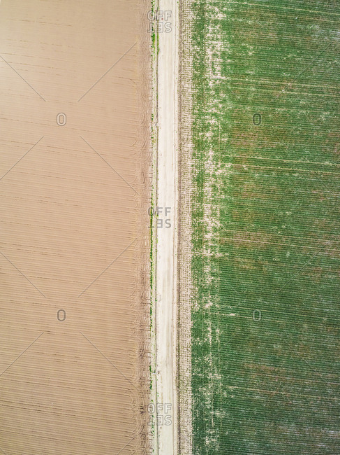 Aerial view of an empty road in the middle of Farmland, Idaho, USA.
