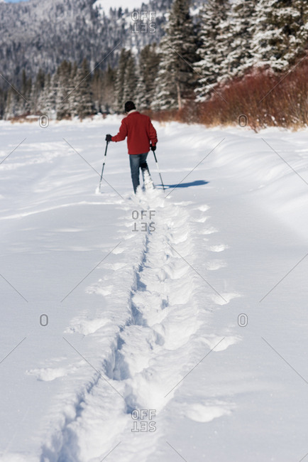 Man walking with ski poles in snowy landscape