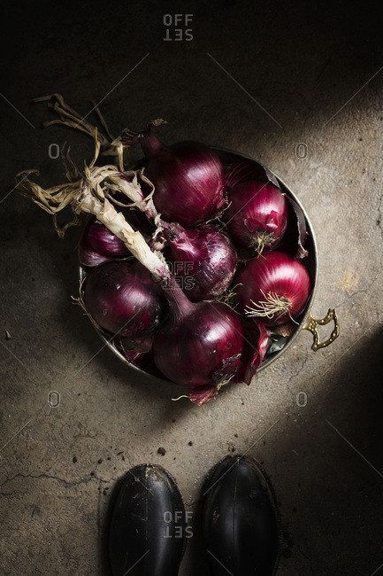 Basket of red onions on grey background country scene