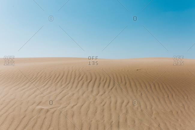 Sand dunes in the Platja del Fangar, Deltebre, Tarragona, Spain