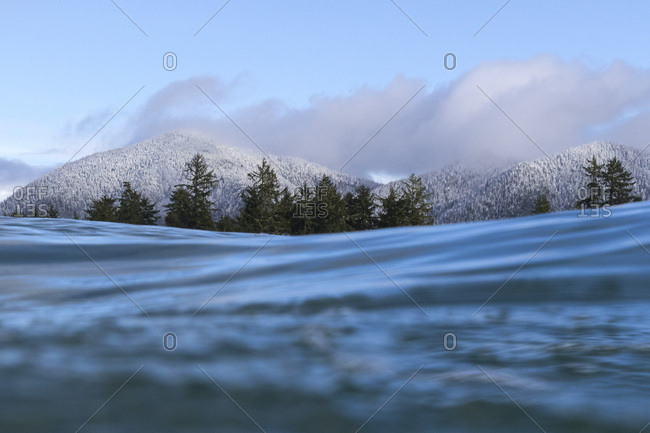 View of snow covered trees on mountainside from water