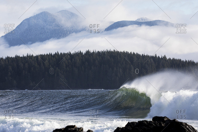 Powerful breaking wave with forest and fog shrouded snowy mountains in background