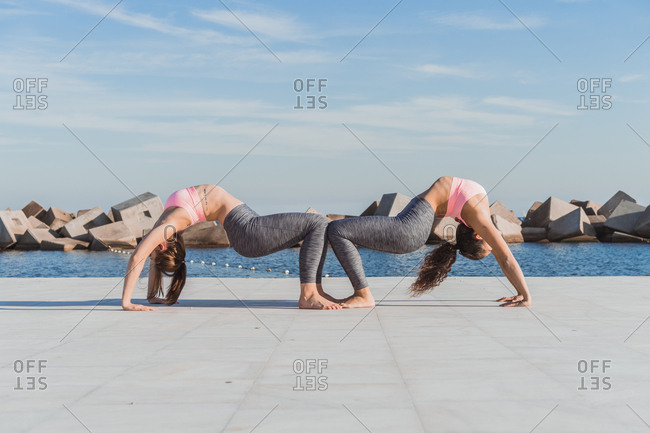 Side view of young attractive women doing pair yoga on embankment.