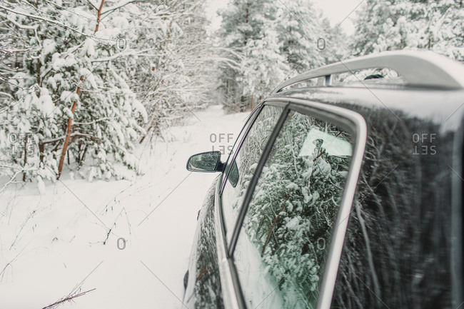 Car on snowy road in forest