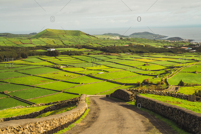 Picturesque landscape of bright green lands in sunlight with view of ocean on background.