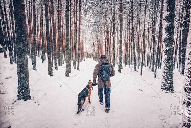 Man walks with dog in forest.