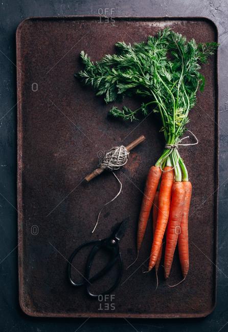 Bunch of fresh carrots in dark metallic background