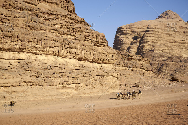Zalabia Bedouin leading a group of camels in Wadi Rum (The Valley of the Moon), a protected desert wilderness in Jordan