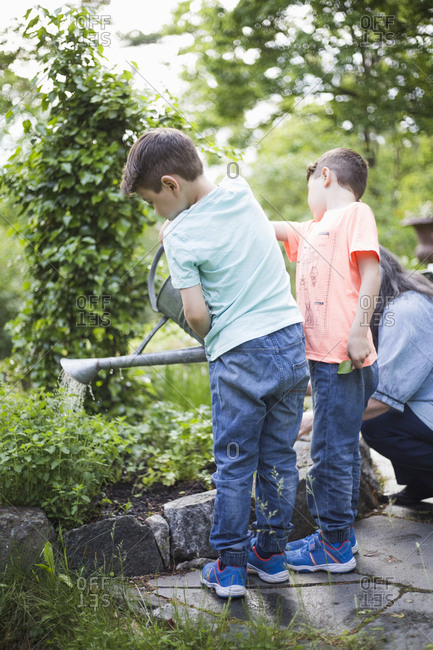 Boys watering plants by grandmother in back yard