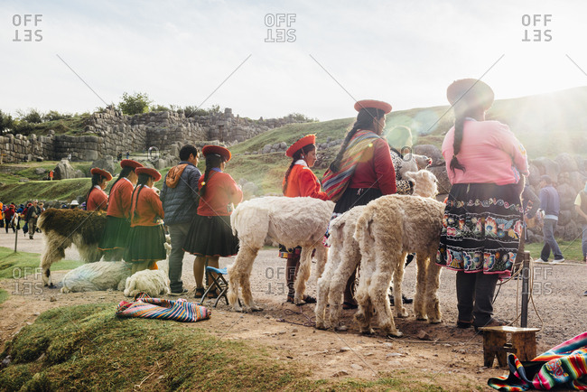 Cuzco, Peru - November 21, 2017: Inca women in traditional dress with llamas from behind
