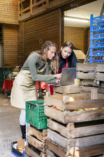 Two women using laptop between crates on a farm