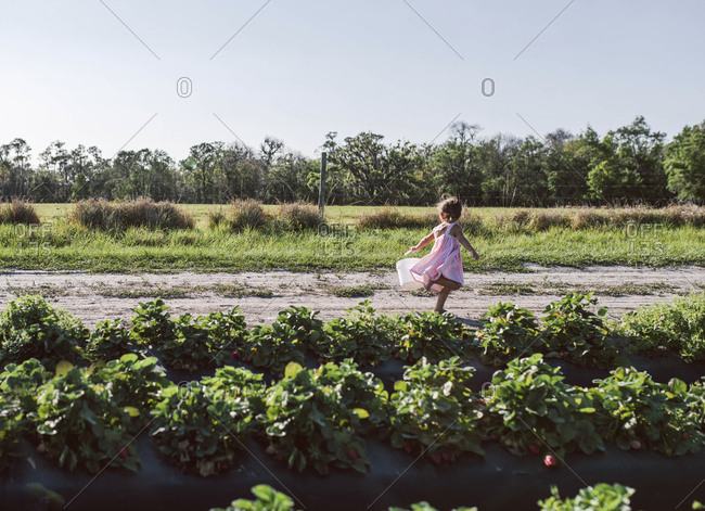 Toddler running in field