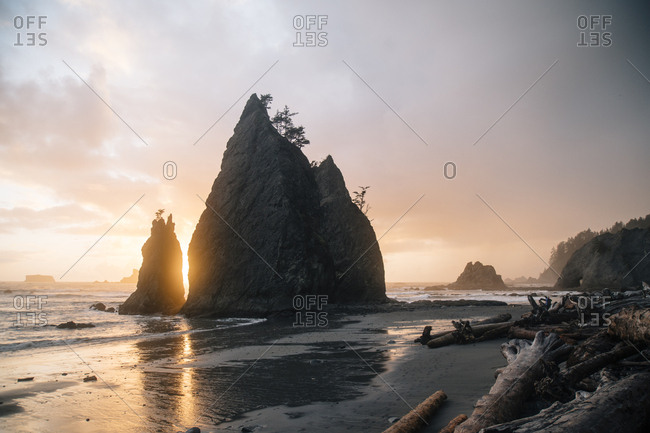 Driftwood on sea shore at beach against rock formation at Olympic National Park during sunset