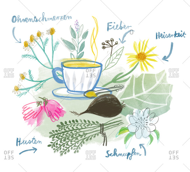 Variety of herbal teas to help with different ailments