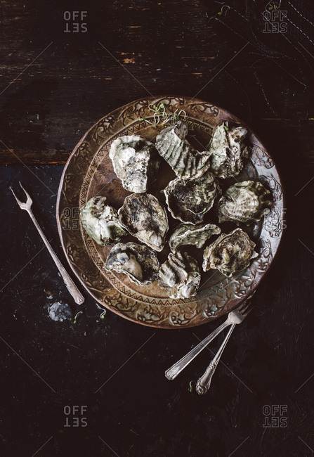 Overhead view of oysters on a plate