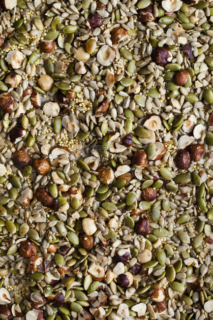Nuts and seeds pattern - Offset
