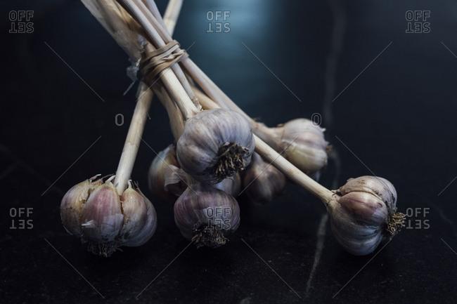 Bundle of garlic bulbs on soapstone countertop, Vermont, USA