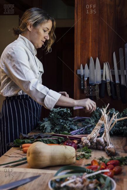 Chef preparing fresh vegetables, Vermont, USA