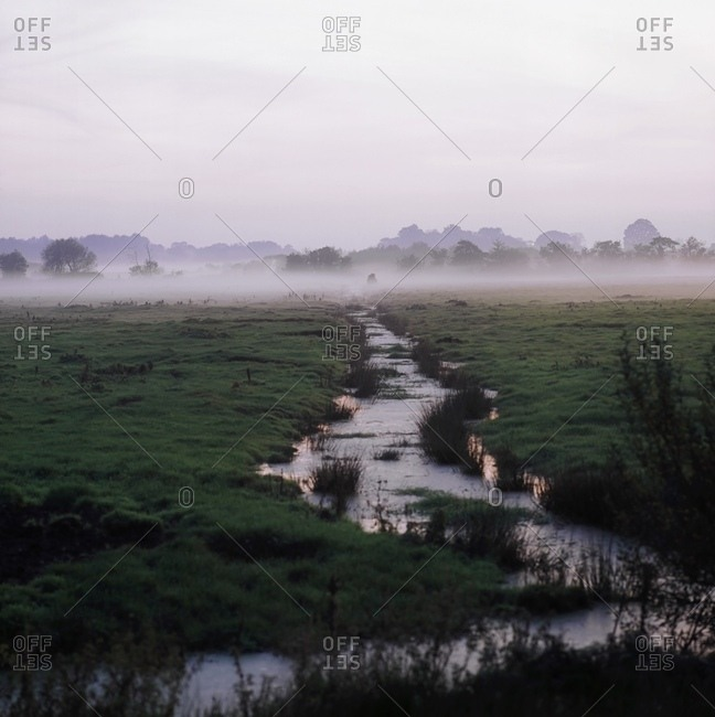 County Armagh, Northern Ireland - December 20, 2007: County Armagh, Northern Ireland, Bog And Ditch Filled With Water