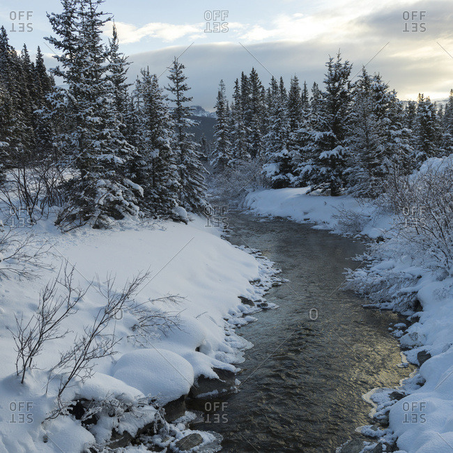 Lake Louise, Alberta, Canada - October 22, 2015: A River Flowing Through A Snow Covered Landscape; Lake Louise, Alberta, Canada