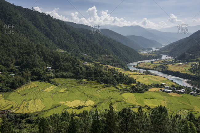 Thimphu, Bhutan - October 12, 2014: River Flowing Through A Valley With Lush Farmland Surrounded By Mountains; Thimphu, Bhutan