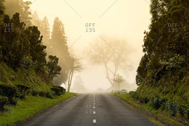 Sao Miguel, Azores, Portugal - March 25, 2016: Daytime Fog At The End Of The Road; Sao Miguel, Azores, Portugal