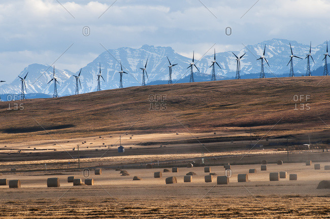 Pincher Creek, Alberta, Canada - October 18, 2009: Wind Turbines In A Row With Hay Bales In The Foreground And The Canadian Rockies In The Background; Pincher Creek, Alberta, Canada
