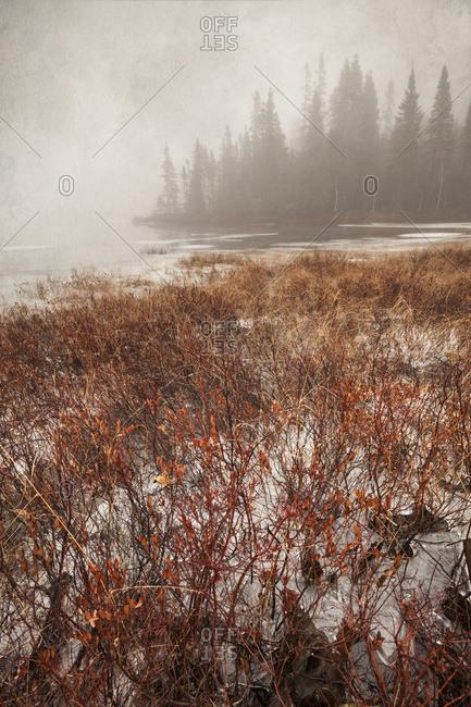 Thunder Bay, Ontario, Canada - December 9, 2015: Northern Autumn Landscape In Fog And Ice; Thunder Bay, Ontario, Canada